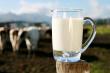 ist1_3721058-milk-jug