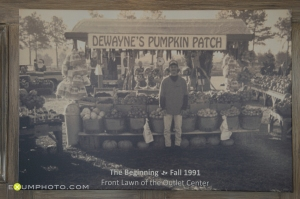 Vintage photo of pumpkin patch